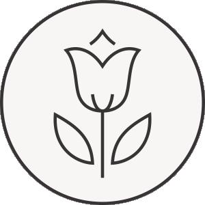 Smuteční květiny, květinová výzdoba